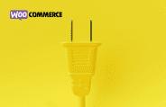 Les 13 meilleurs plugins de SEO pour WooCoommerce que vous devez connaître